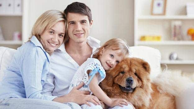 Wills & Trusts dog-young-family Direct Wills Cricklewood